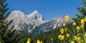 Race For Liberty: Ένας νέος αγώνας δρόμου 100 μιλίων σε ορεινό περιβάλλον!