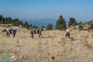 13ος Ορεινός Μαραθώνιος Οίτης, με ρεκόρ συμμετοχών στον Μαραθώνιο!